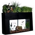 Hydroponic Fish Tank Garden, 10 Gallon (B01B4ZRVR4), Amazon Price Tracker, Amazon Price History